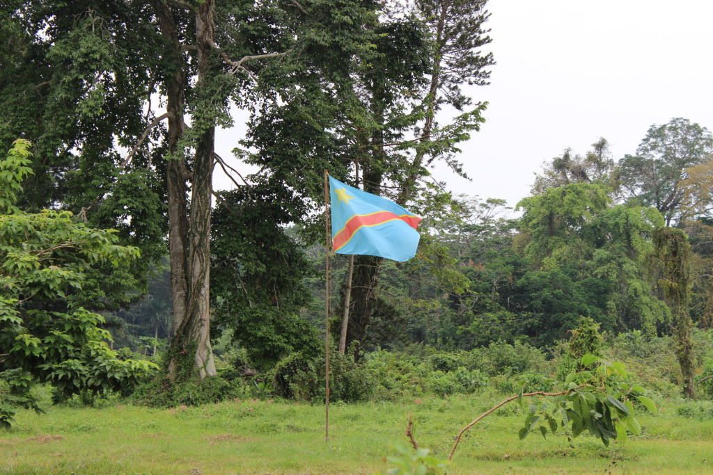 The DRC flag blows in the wind at the Botanical Garden.