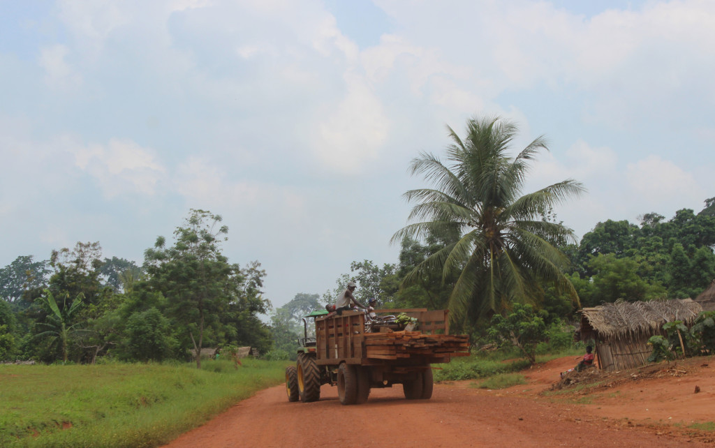 "Although commercial logging is not widespread in the DRC, ""artisinal"" logging is allowed in certain instances."