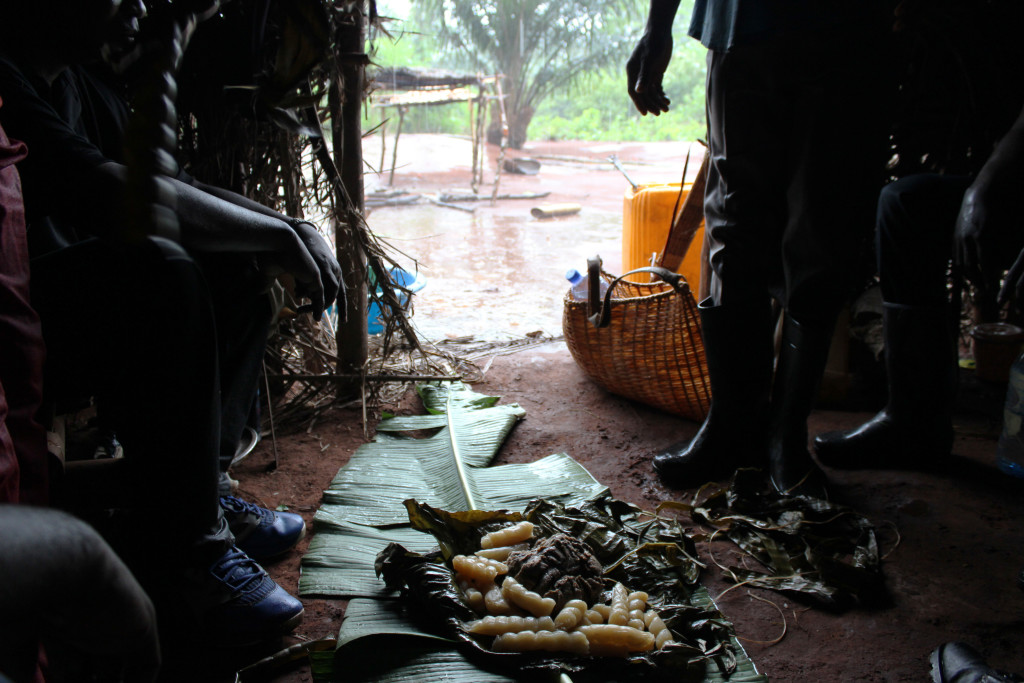 The Projet Équateur team was welcomed into a seasonal forest home during a downpour in the forest. For lunch? Cassava and dried caterpillars with peanuts.