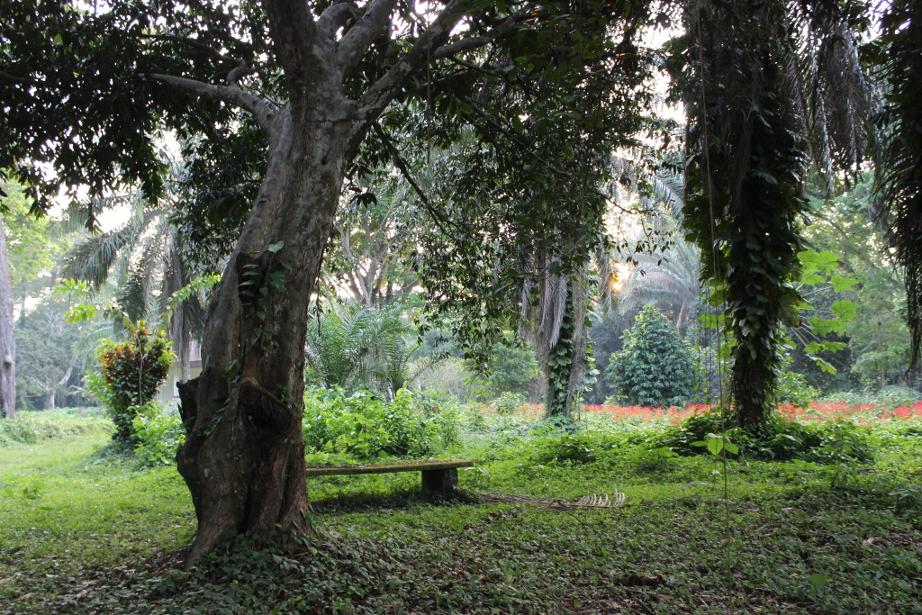 The Botanical Garden of Eala covers over 371 hectares of land.